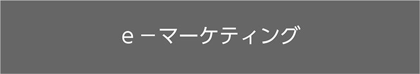 e-マーケティング